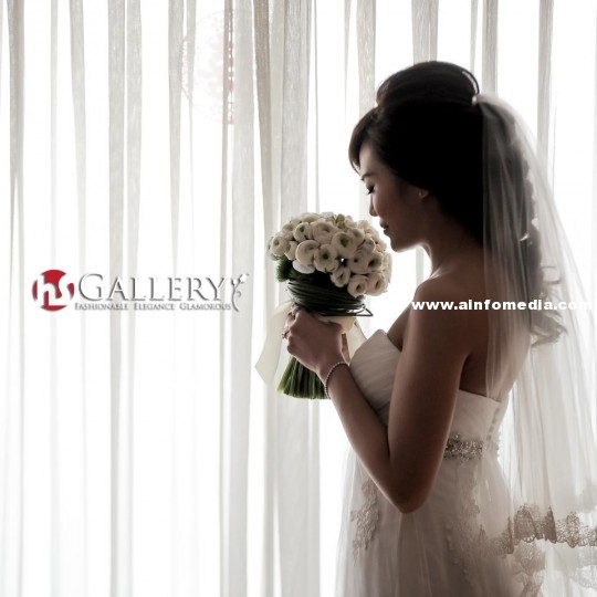hso-gallery