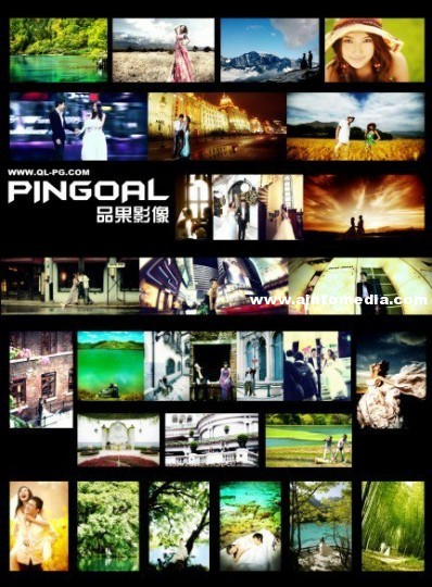 pingoal